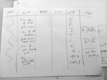 Sanskruta's schedule